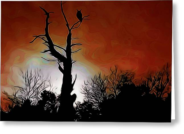 Sunset Owl Digital Art Greeting Card by Ernie Echols