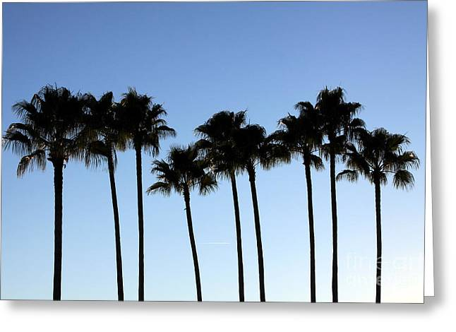 Greeting Card featuring the photograph Sunset Palms by Chris Thomas