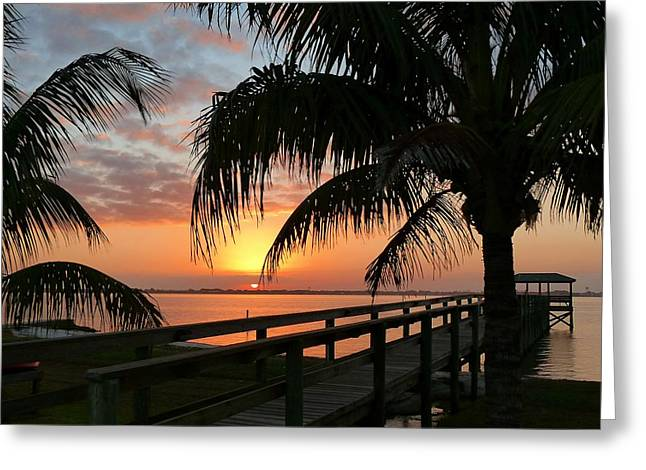 Greeting Card featuring the photograph Sunset Palms by Elaine Franklin