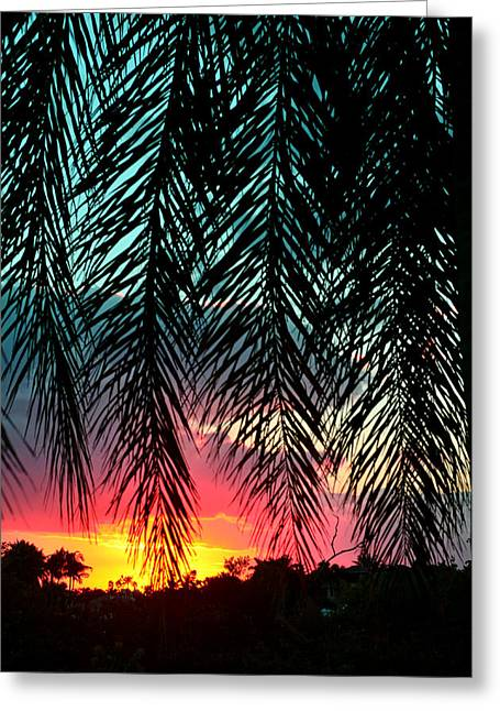 Sunset Palms Greeting Card by Laura Fasulo