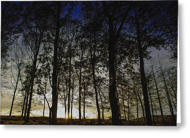 Sunset Greeting Card by Paul Dale