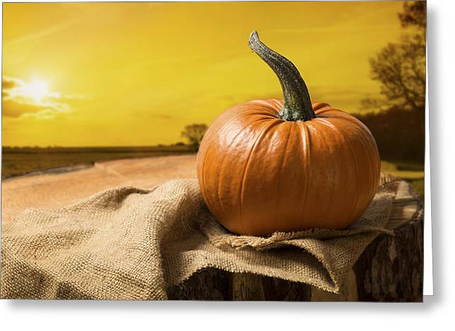 Sunset Pumpkin Greeting Card by Amanda Elwell