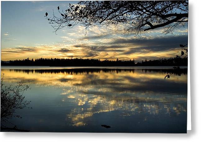 Greeting Card featuring the photograph Sunset Reflection by Yulia Kazansky