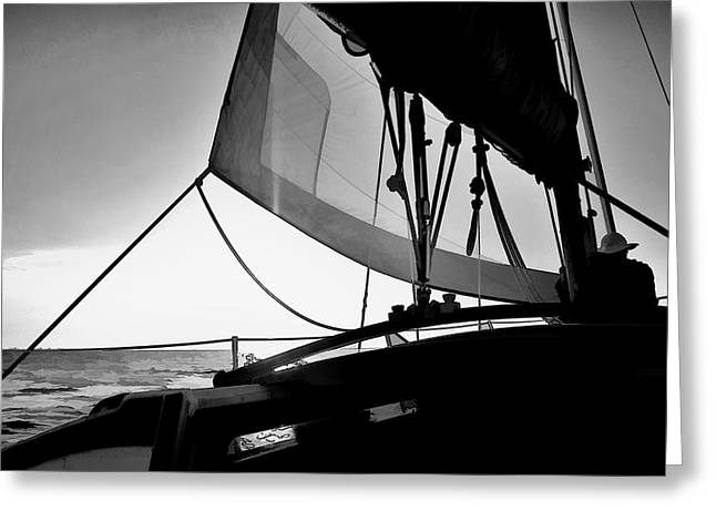 Sunset Sail In Black And White Greeting Card