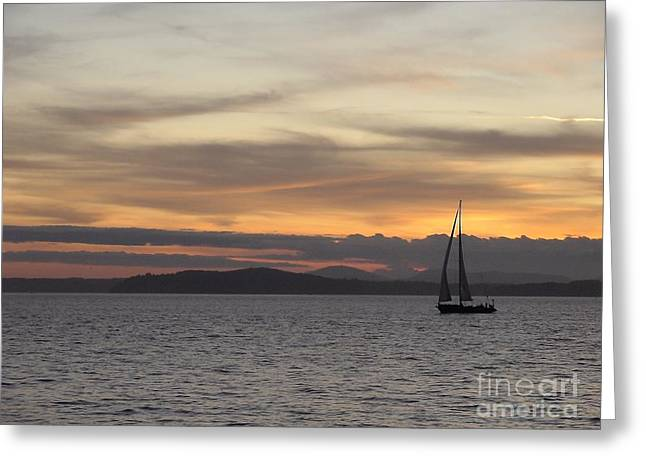 Sunset Sail In Seattle Greeting Card