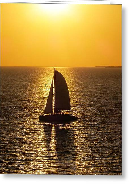 Greeting Card featuring the photograph Sunset Sail by Jennifer Wheatley Wolf