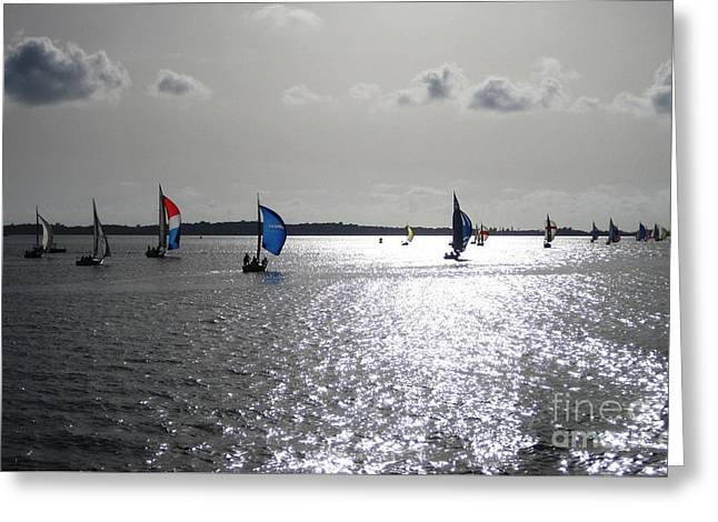 Greeting Card featuring the photograph Sunset Sail by Judy Palkimas