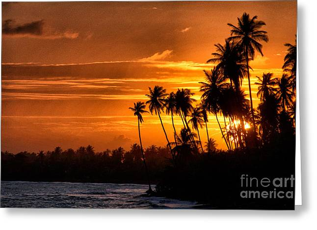 Sunset Salinas Puerto Rico Greeting Card