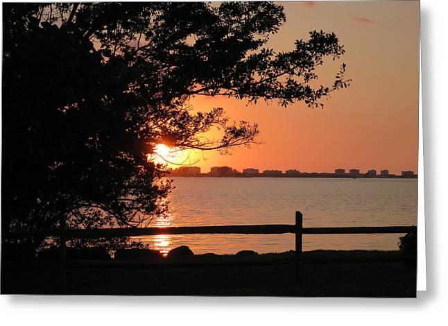Sunset On Sarasota Harbor Greeting Card