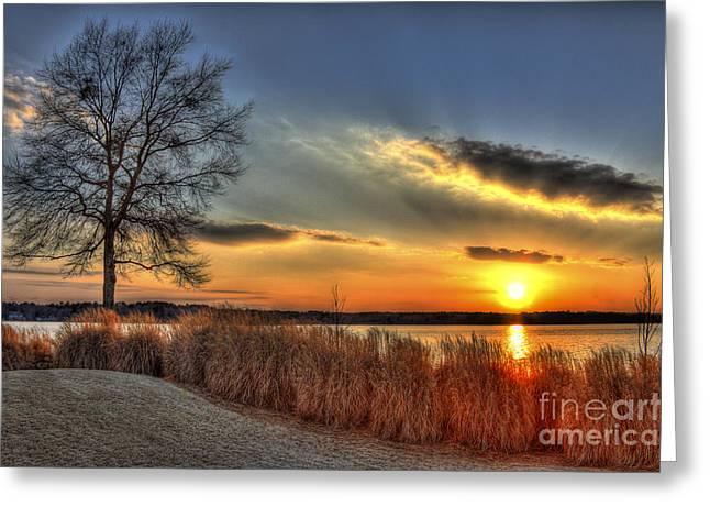 Sunset Sawgrass On Lake Oconee Greeting Card by Reid Callaway