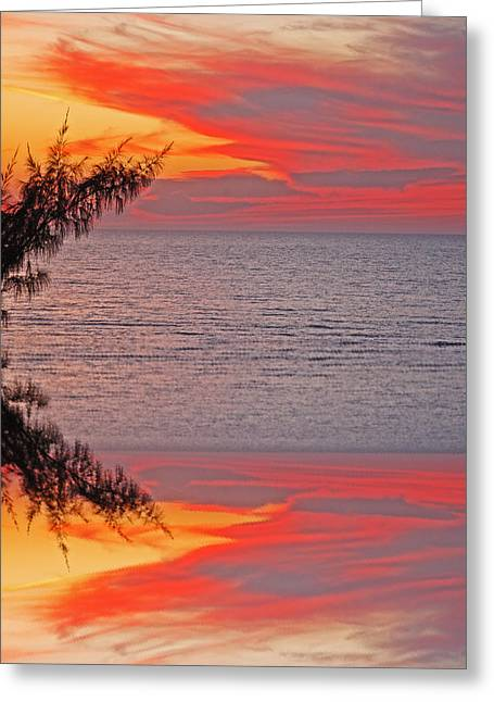 Sunset Seranade Greeting Card by Aimee L Maher Photography and Art Visit ALMGallerydotcom