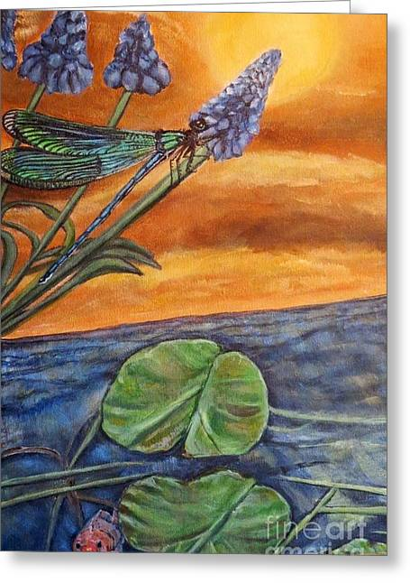 Sunset Setting Over A Dragonfly On A Water Lily Pond Greeting Card by Kimberlee Baxter