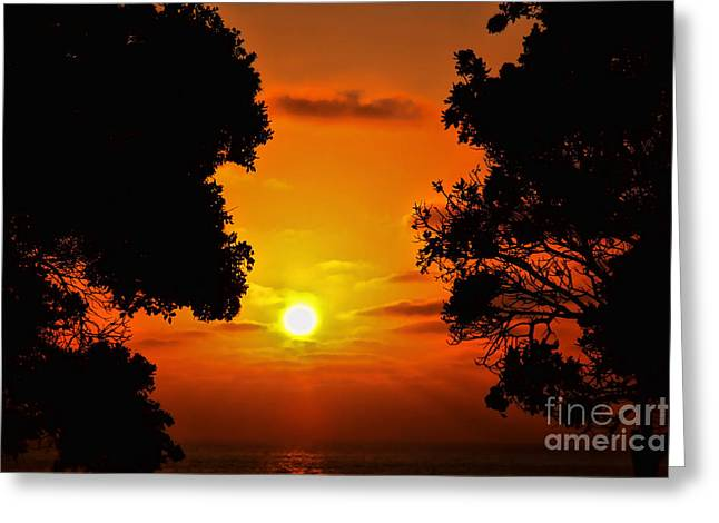 Sunset Silhouette By Diana Sainz Greeting Card by Diana Sainz