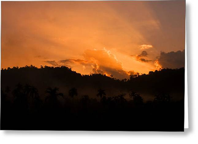 Sunset Silhouette Greeting Card by Kim Lagerhem