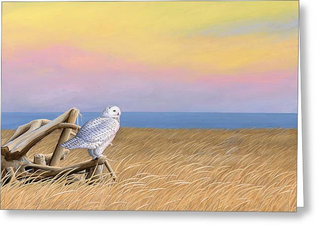 Sunset Snowy Owl Greeting Card by Kirsten Wahlquist