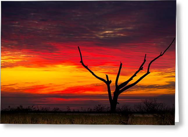 Sunset Solitude Greeting Card by Mark Andrew Thomas