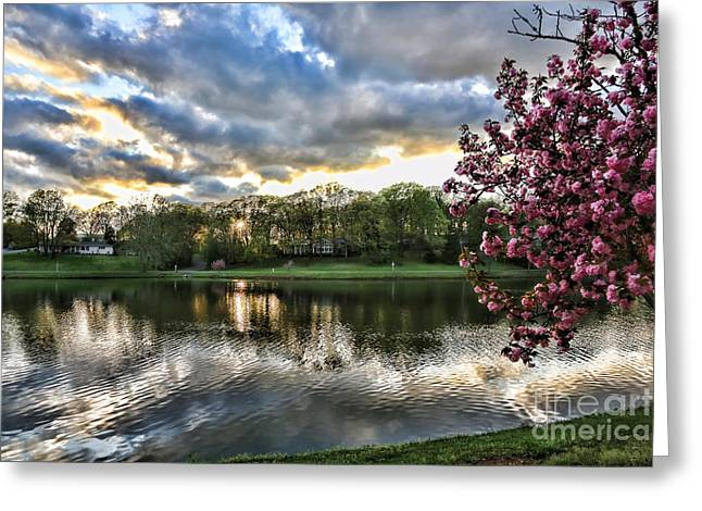 Sunset Southern  Greeting Card by Chuck Kuhn
