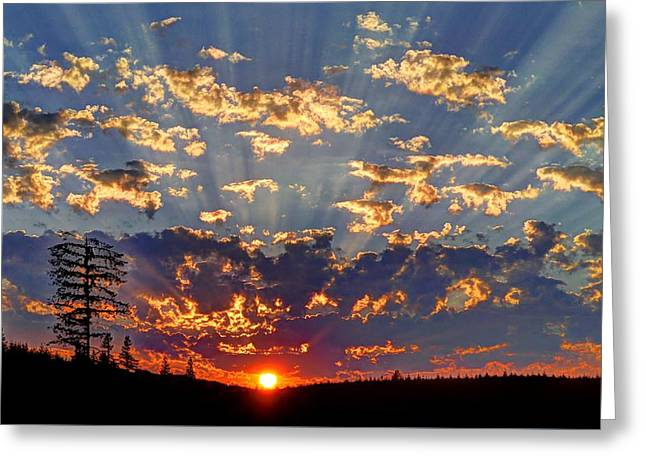 Sunset Spectacle Greeting Card