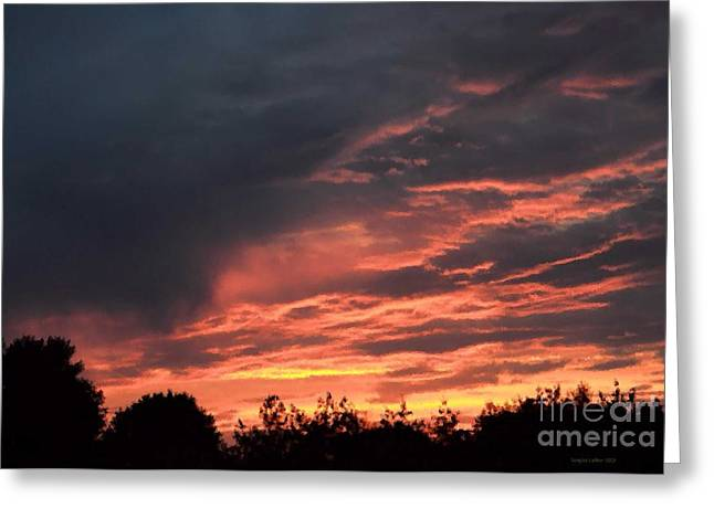Greeting Card featuring the photograph Sunset Streaks by Luther Fine Art