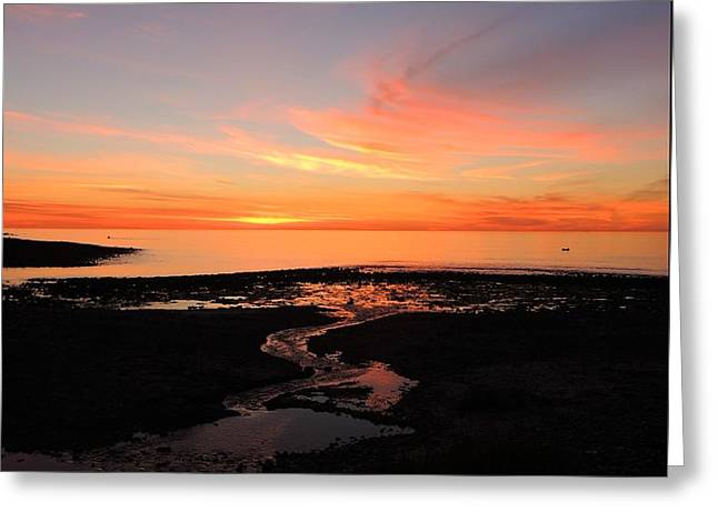 Field River, Hallett Cove Greeting Card by Linda Hollis