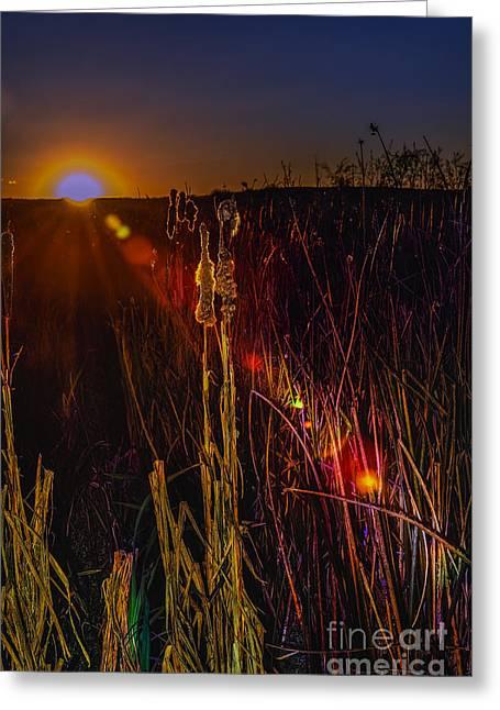 Sunset Sun-beam Greeting Card