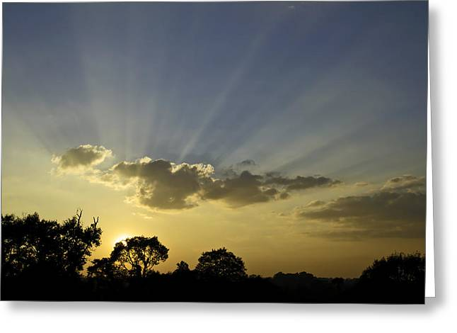 Sunset Sunrays Greeting Card