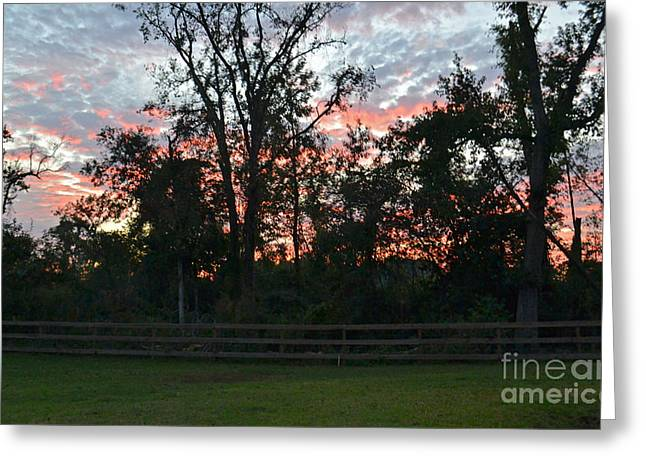 Sunset Texas Greeting Card