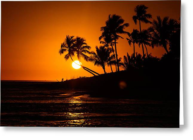 Sunset Through The Palm Trees Greeting Card