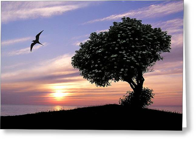 Sunset Tree Of Tranquility Greeting Card