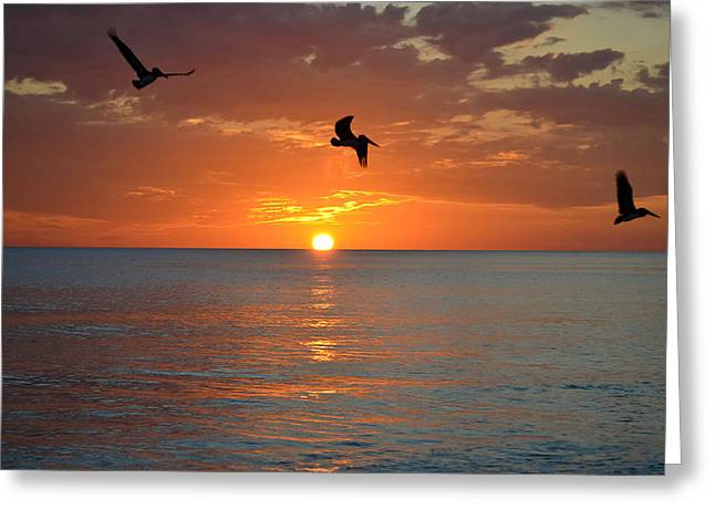Sunset Trio Greeting Card by Elbe Photography