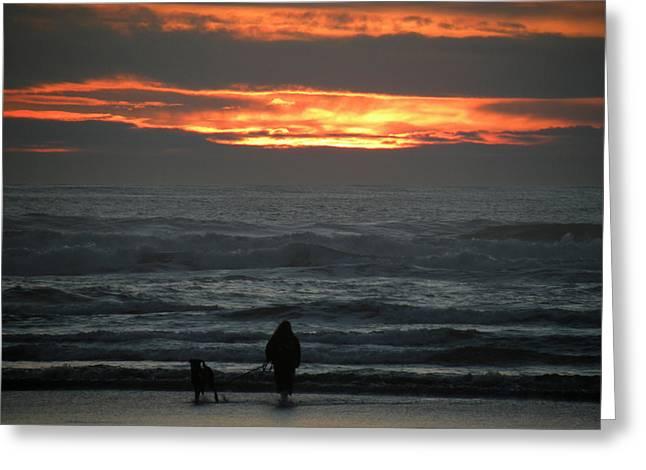Sunset Walk Greeting Card by David Quist