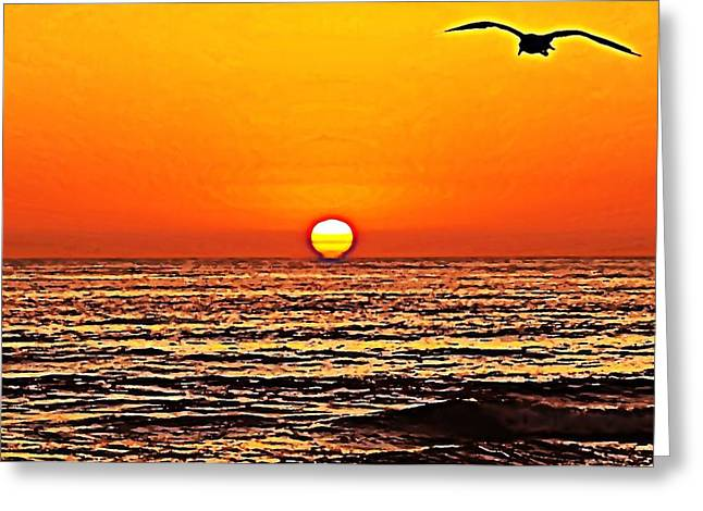 Sunset With Seagull Greeting Card by Sharon Soberon