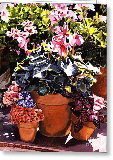 Sunshine And Flowerpots Greeting Card by David Lloyd Glover