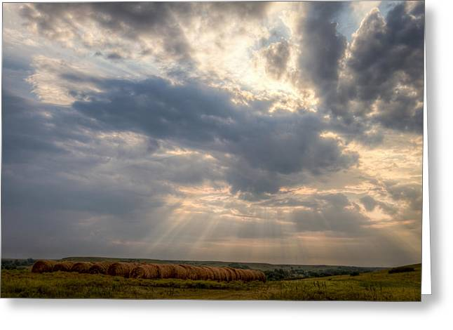 Sunshine And Hay Bales Greeting Card by Scott Bean