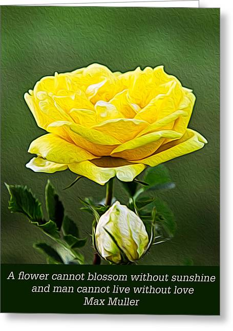 Sunshine On A Yellow Rose Greeting Card