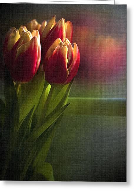 Sunshine On My Window Greeting Card by Cindy Rubin