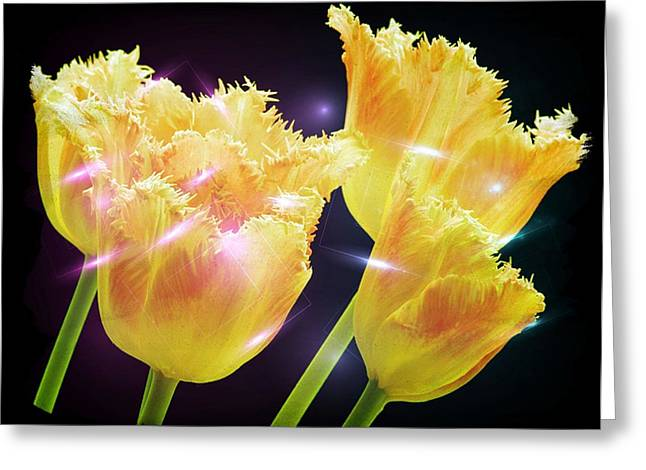 Sunshine Tulips Greeting Card by Debra  Miller