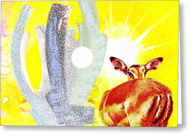 Suntrenched  Africa Greeting Card by Hartmut Jager