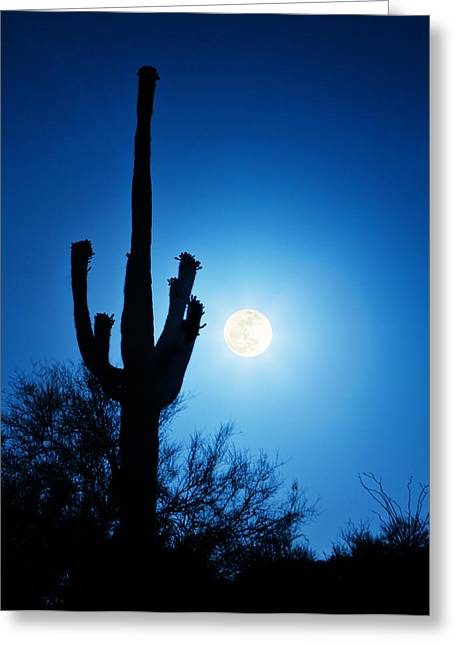 Super Full Moon With Saguaro Cactus In Phoenix Arizona Greeting Card