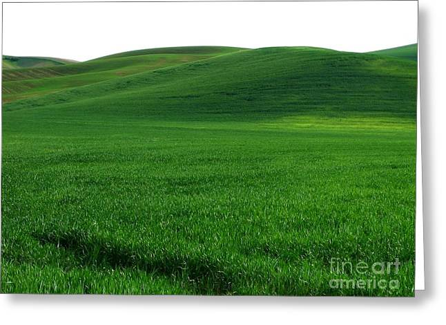 Super Greens Land Greeting Card by Boon Mee