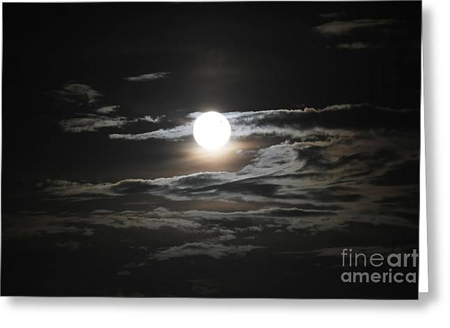 Super Moon 2013 Greeting Card by Cathy Lindsey