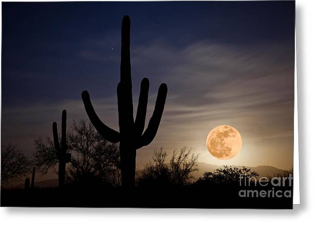 Super Moon Over Sonoran Desert Greeting Card by Richard and Ellen Thane
