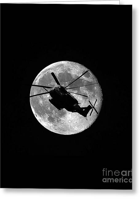 Super Stallion Silhouette Vertical Greeting Card by Al Powell Photography USA