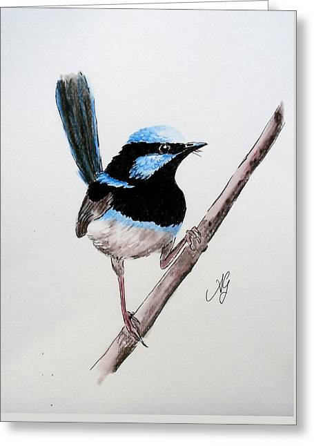Superb Fairy Wren Greeting Card
