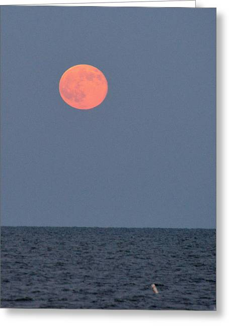Supermoon Over Nantucket Sound Greeting Card