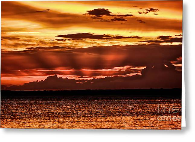 Surf City Sunset Greeting Card by Mark Miller