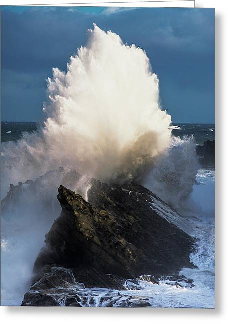 Surf Erupts On The Rocks At Shore Acres Greeting Card
