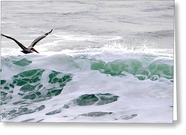 Greeting Card featuring the photograph Surf N Pelican by AJ  Schibig