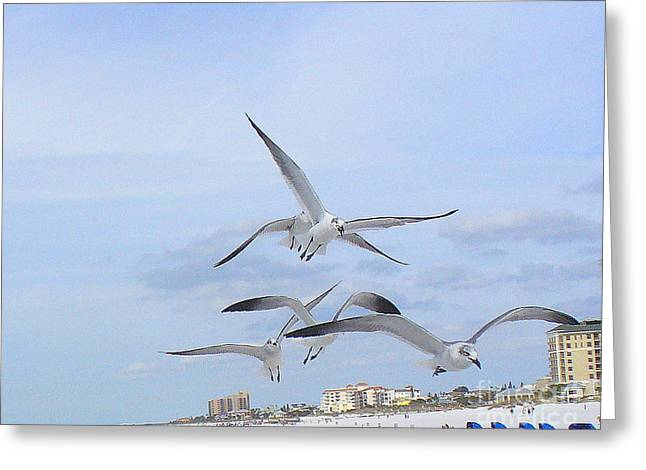 Surfing Party At Clearwater Beach Greeting Card by Lingfai Leung