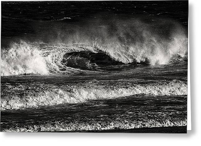 Surf's Up In Ocean City In Black And White Greeting Card by Bill Swartwout